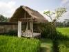 villa-rumah-lotus0026